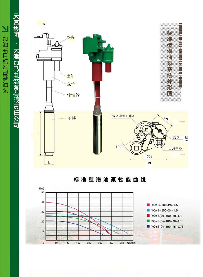 綠牌潛油泵,潛油泵,防爆液下泵,防爆化工泵,不銹鋼液下泵,不銹鋼化工泵,綠牌電潛泵