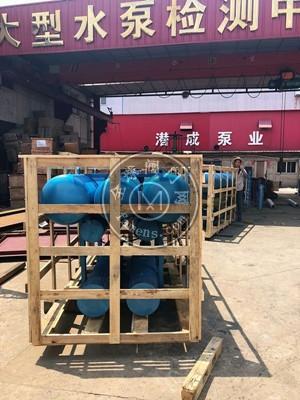 天津潜成浮筒式高扬程潜水泵使用方式