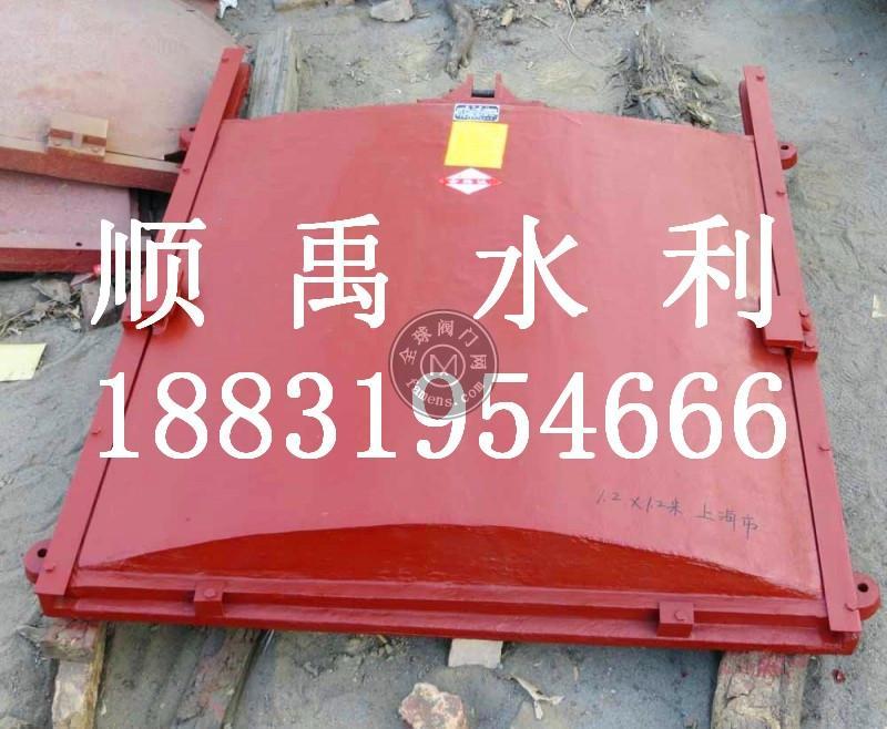 铸铁镶铜闸门厂家