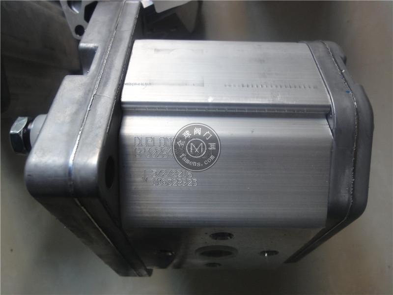 GP1-0041R97F/20N迪普马DUPLOMATIC齿轮泵