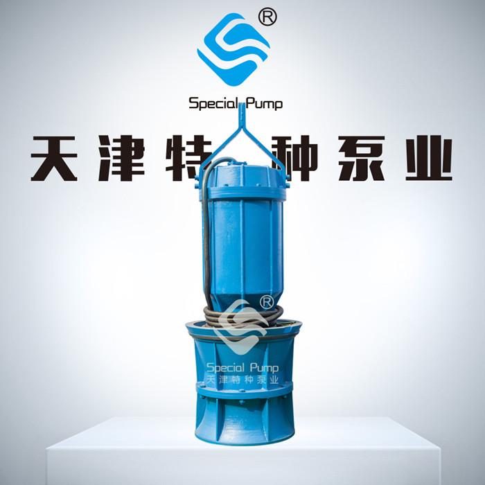 高揚程大流量軸流泵供應商