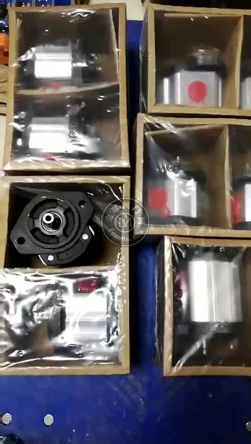 意大利马祖奇高压齿轮泵MARZOCCHI