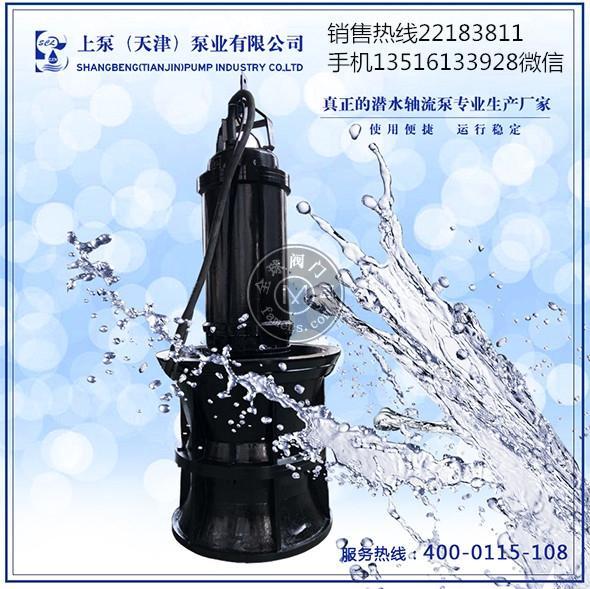 陕西西安无阻塞潜水轴流泵
