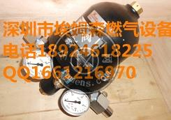 意大利TARTARINI RP/10调压器塔塔里尼RP/10调压阀维修包备件包
