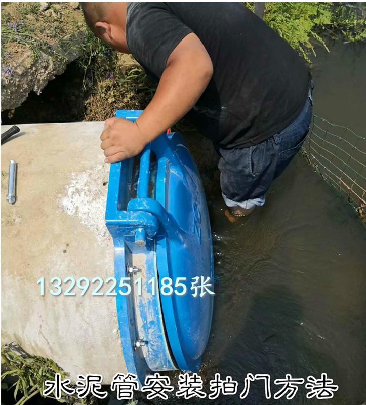 防河水倒灌DN1000玻璃钢拍门