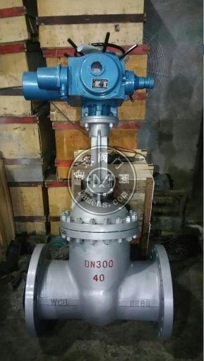 总线型法兰电动高压闸阀