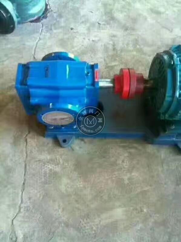 高粘度不锈钢齿轮泵 KCB-55不锈钢齿轮泵