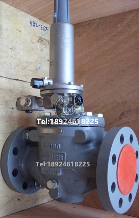 FISHER EZR调压器减压阀备件包GASCAT GIPS-FC燃气切断阀