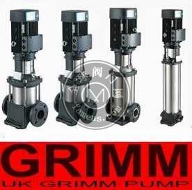 进口不锈钢立式多级管道泵(欧美进口10大品牌)