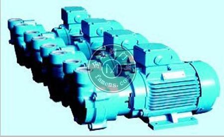 电子厂吸附移位佶缔纳士真空泵2BV5131、啤酒灌装机用NASH真空泵2BE1202、制药用纳西姆真空泵2BV5111
