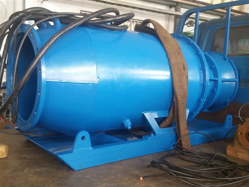 工程用大流量低扬程潜水轴流泵