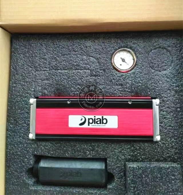 Piab真空发生器P3010.01.AG.01.AA.00