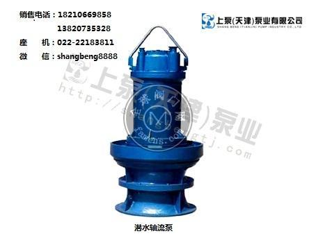 上泵泵業潛水軸流泵