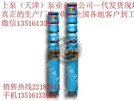 井用潜水泵(100QJ)
