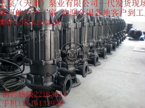 潜水排污泵300QW