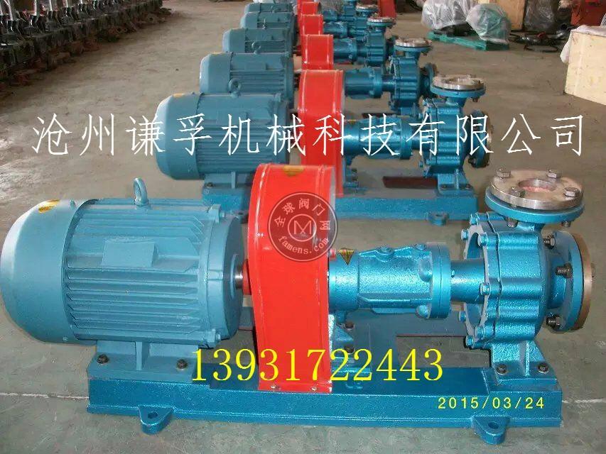 RY65-50-160導熱油泵 鑄鋼熱油泵350度