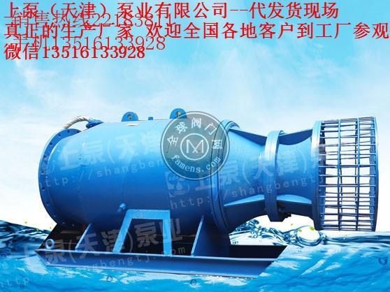 QZB型雪橇式潜水轴流泵