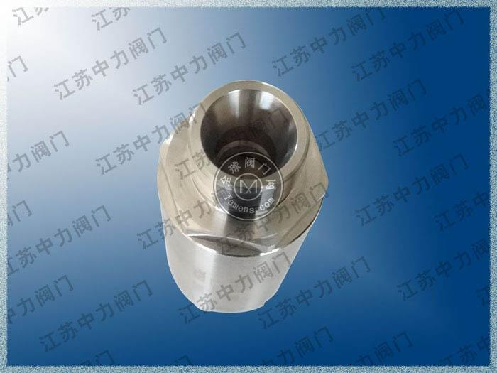 不锈钢高压止回阀H21X-160P/320P实拍图