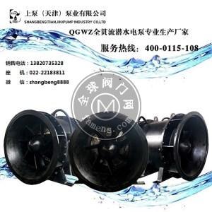 上泵QGWZ双向排水全贯流泵