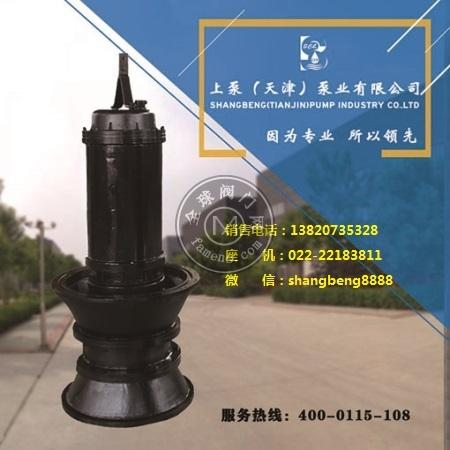500QZB潛水軸流泵