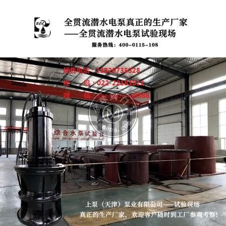 600QZB潛水軸流泵
