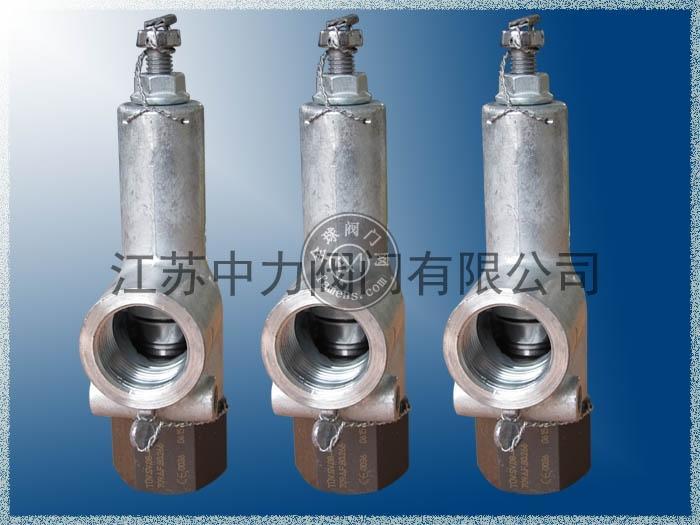 原裝德國進口哈威hawe安全閥MVX64C-266  CNG儲氣瓶組安全閥