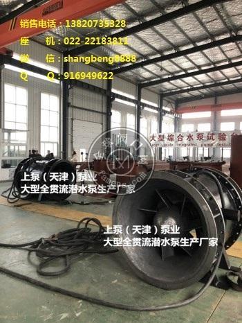 單向排水貫流泵、大型電排站全貫流泵