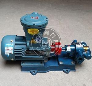 泊头齿轮泵厂KCB系列齿轮泵