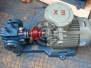 泊头齿轮泵厂BW系列保温齿轮泵