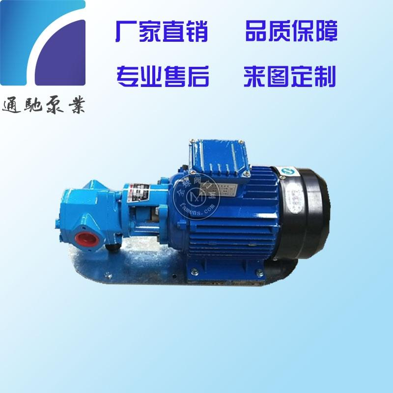 供应通驰牌WCB手提泵 便携式油泵 220V齿轮泵