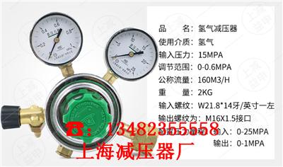 上海正品YQQ-342氢气减压阀