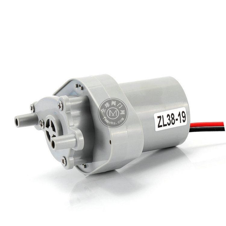 ZL38-19冲洗器水泵 直流无刷水泵 12V微型水泵
