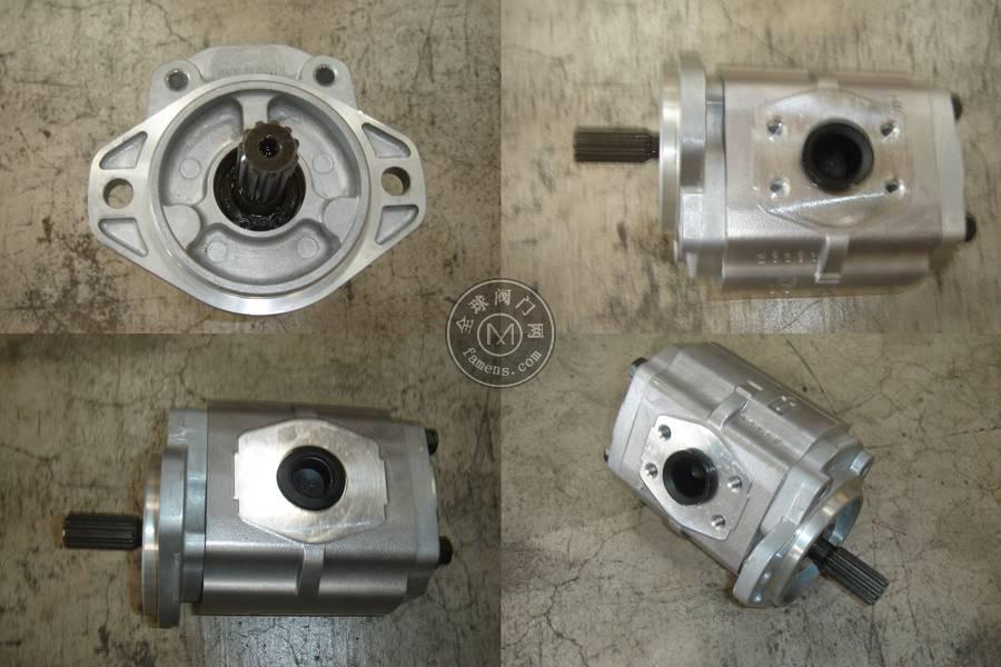kyb进口订制油泵KFP51100CSMSM