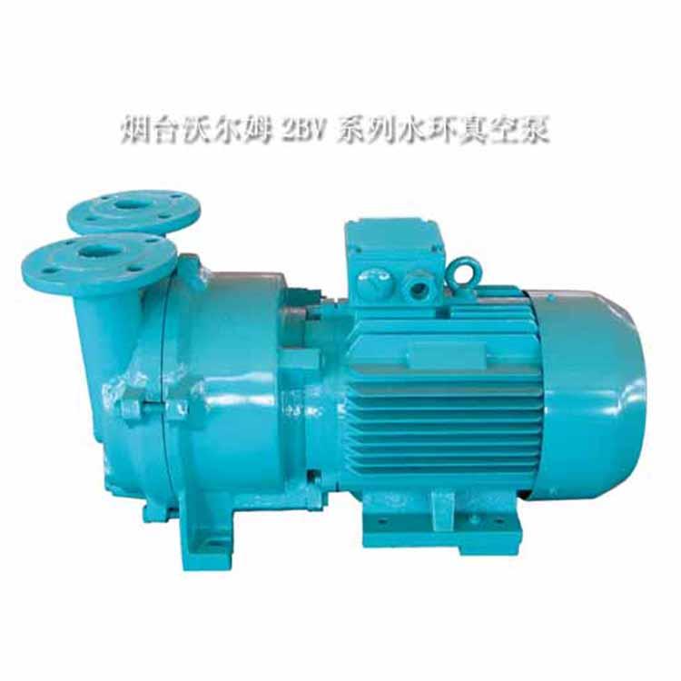 2BV水環式真空泵及壓縮機|沃爾姆品牌