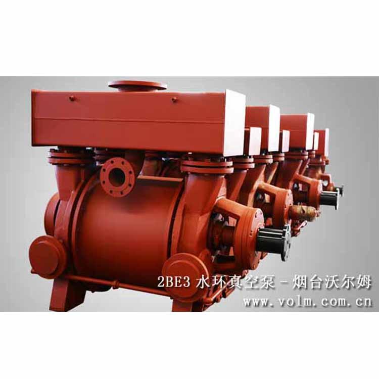 2BE3液环真空泵及压缩机 沃尔姆品牌