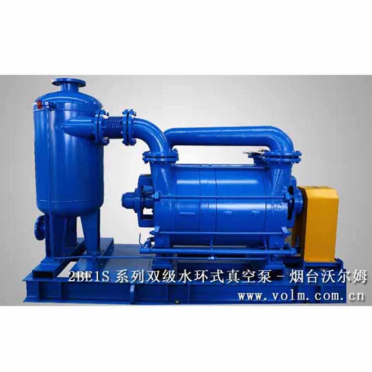 2BE1S双级液环真空泵 沃尔姆品牌