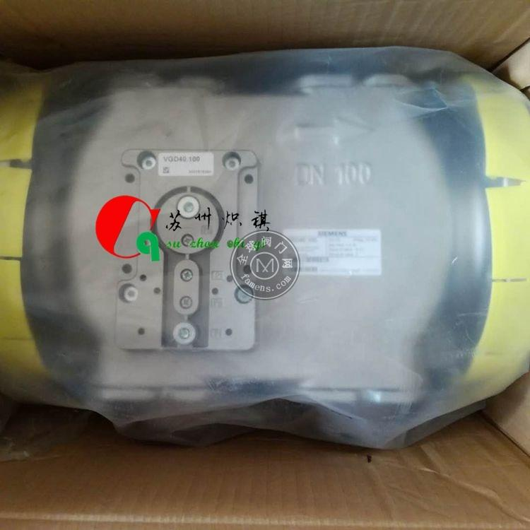 E6G*SR8*1/2 GMO巴拿馬電磁閥安全閥