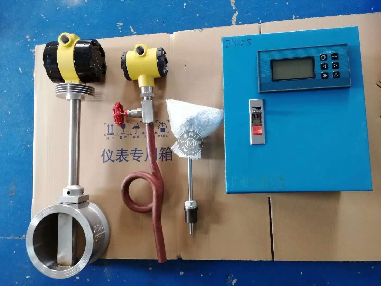 佛山生產部門用蒸汽流量計