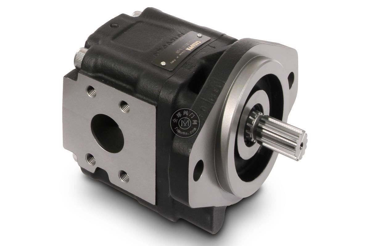 CASAPPA齿轮泵PLP20.9-31S1-LOC/OC/20.9-LOC/OC D/FS EL