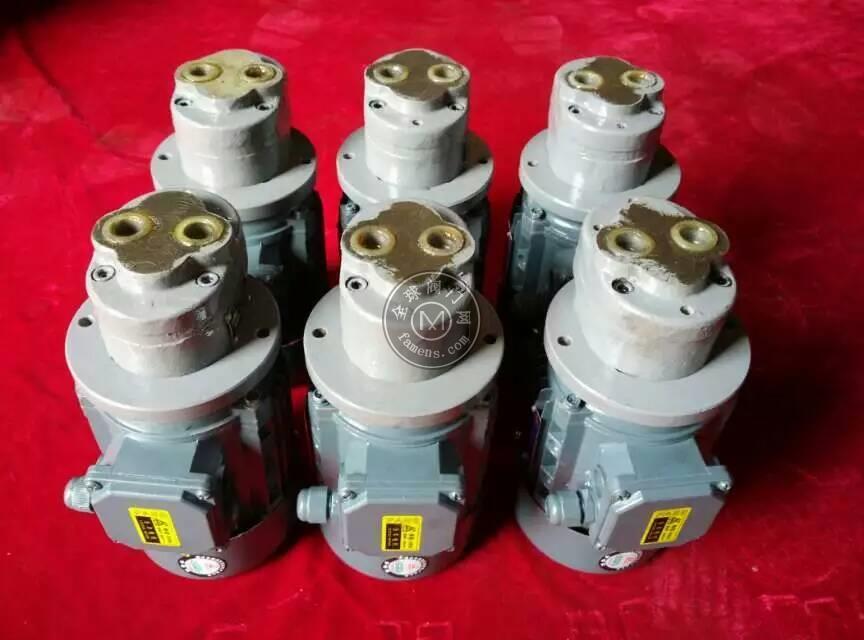 直插式齒輪泵電機組