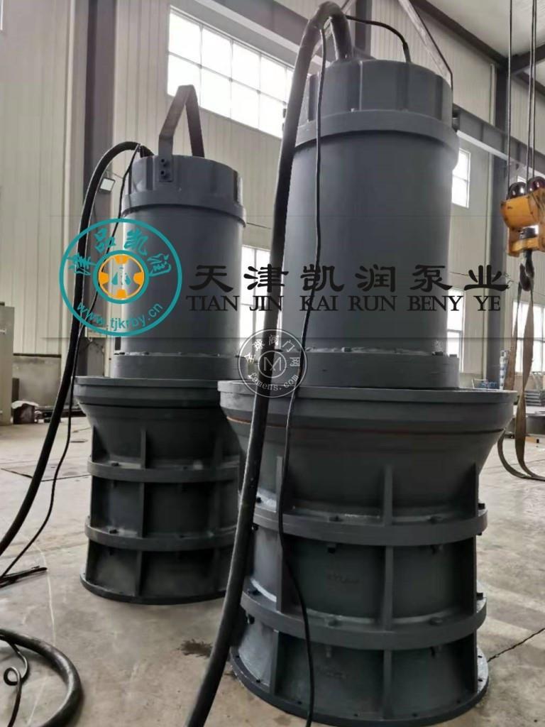 潛水軸流泵