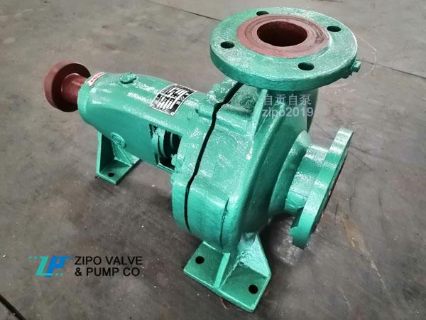 自贡自泵水泵厂铸铁ZIS型ZIR型卧式单级单吸离心泵清水泵循环泵
