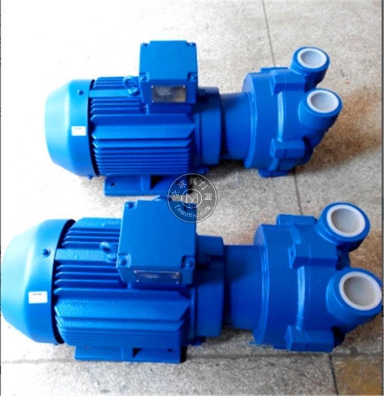 NASH 纳士水环真空泵 2BV20700NC00 2P 允许夹带少液体 适合制药机械配套