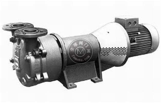 希赫/SIHI化工流程泵 LELC250液環真空泵