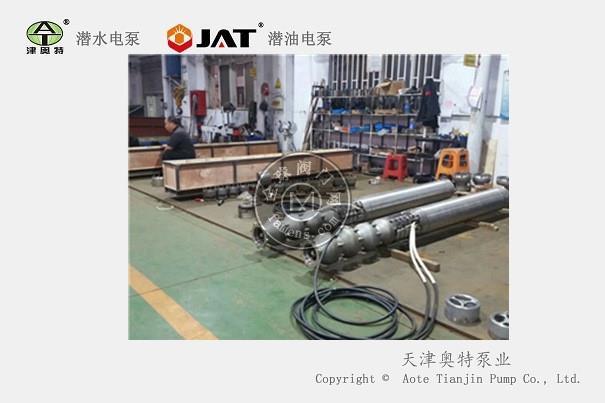 不锈钢卧式海水提升泵_耐腐蚀潜海水电泵