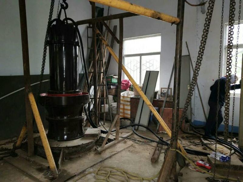 新一代智能控制型潜水轴流泵