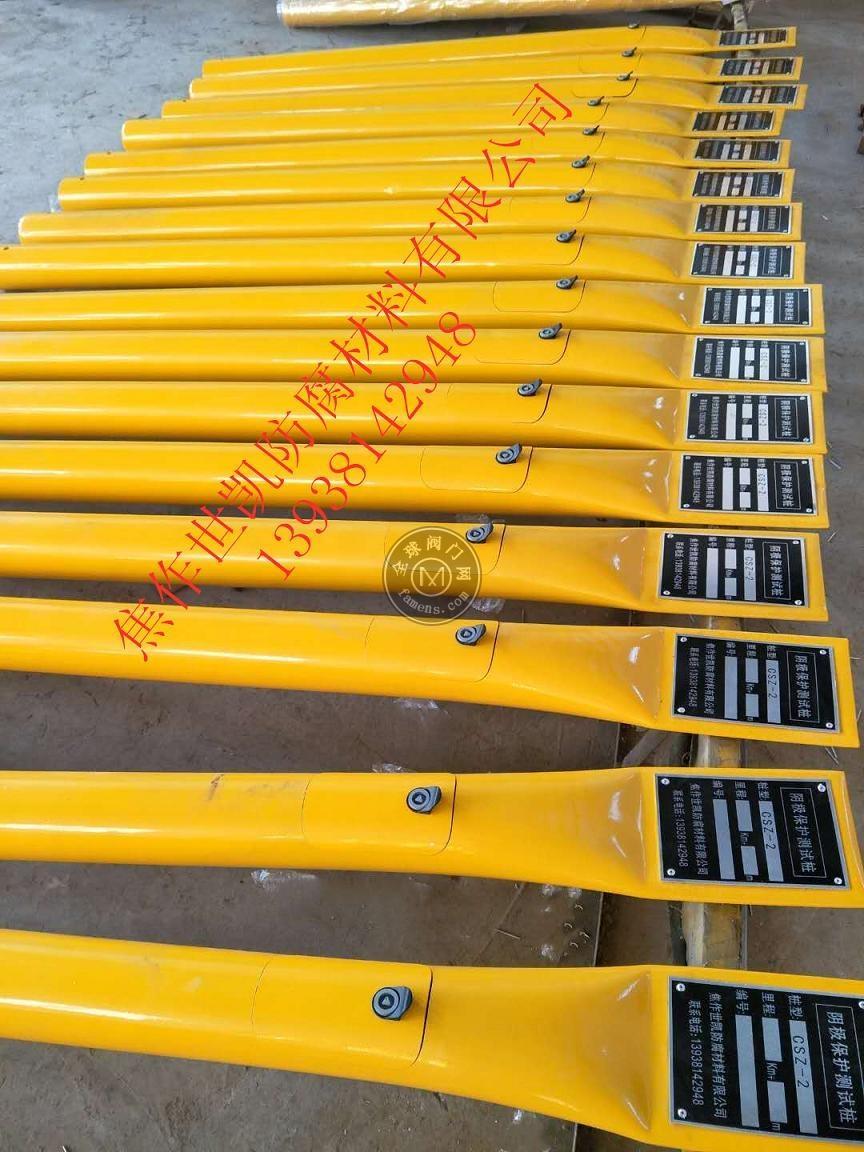 涂塑測試樁  陰極保護測量用測試樁
