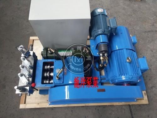 高压泵~高温高压泵~高温高压化工泵
