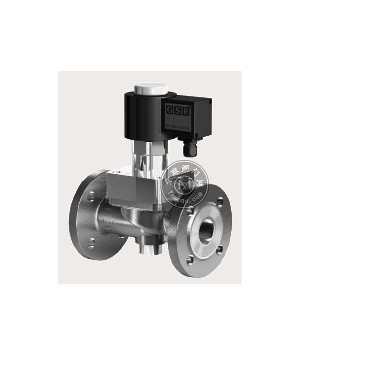 德国GSR电磁阀蒸汽用24TH 200摄氏度 DN65-DN2OO
