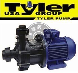 进口塑料泵,tyler美国进口塑料泵